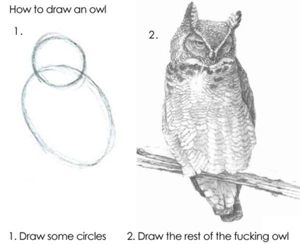 "Visualization of how to draw an owl. First picture: two circles labeled ""1. Draw some circles"". Second picture: Picture of an own labeled ""2. Draw the rest of the fucking owl"""